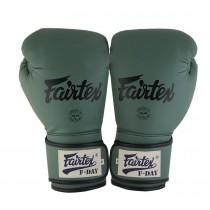Fairtex | 限量款 戰士 拳擊手套 (BGV11)-12oz
